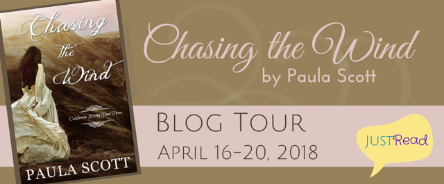 Chasing the Wind blog tour_preview
